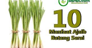 10 Manfaat Serai Untuk Kesehatan