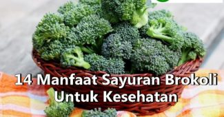 14 Manfaat Brokoli Yang Menakjubkan